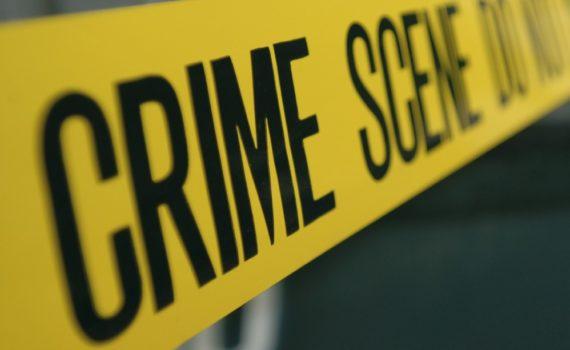 Los 5 mejores libros de criminología