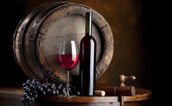 Los 5 mejores libros sobre el vino