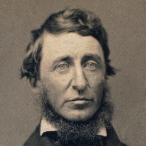 Los 10 mejores libros de Henry David Thoreau