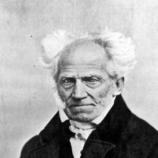 Los 20 mejores libros de Arthur Schopenhauer